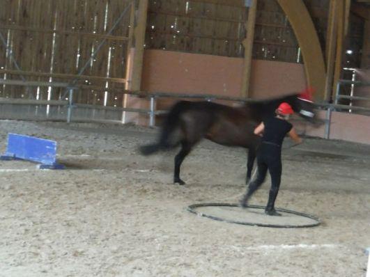 Le saute a longe - jump, turn, jump.