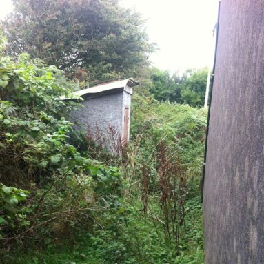 It was so overgrown I couldn't even approach the old muck heap